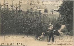 1906 -  SUMPERK , Gute Zustand, 2 Scan - Tchéquie