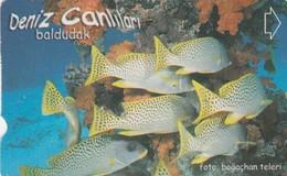 Turkey, TR-TT-N-352, Baldudak, Sea Creatures, Fish, 2 Scans. - Turkey