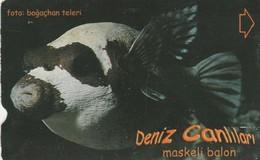 Turkey, TR-TT-N-358, Maskeli Balon, Sea Creatures, Fish, 2 Scans. - Turkey