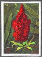STAGHORN SUMAC Flower National Wildlife Federation Washington NWF 1967 USA Charity LABEL CINDERELLA VIGNETTE - Altri