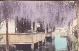 AK Japan - Buildings In River  (50265) - Kobe