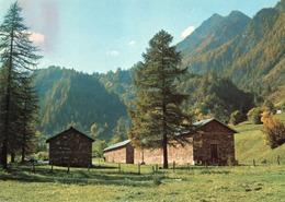 CT-03674- VAL GERMANASCA PITTORESCA - ( TORINO ) COLONIA DELLE CASERMETTE - NON VIAGGIATA - Italia