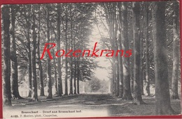 Brasschaat Brasschaet Dreef Aan Brasschaet Hof Hoelen Cappellen 4105 ZELDZAAM Kasteel Chateau Park Van - Brasschaat