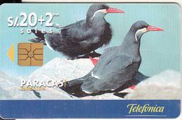 PERU - Paracas(matt Surface), Telefonica Telecard, Chip GEM1.1, Tirage %50000, 08/99, Used - Peru