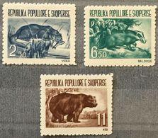 Albania 1961 ☀ Fauna / Badger, Otter, Bear Set Of 3v ☀ MNH** - W.W.F.