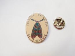Superbe Pin's En EGF , Insecte , Coteaux Calcaires De Picardie , Signé MCV - Animaux