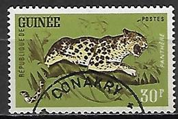 GUINEE  -   1962 .    Y&T N°107 Oblitéré  .Panthère - Guinea (1958-...)