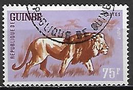 GUINEE  -   1962 .    Y&T N°109 Oblitéré  . Lion - Guinea (1958-...)