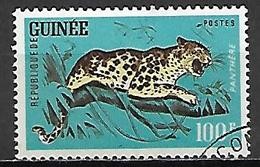 GUINEE  -   1962 .    Y&T N°110 Oblitéré  . Panthère. - Guinea (1958-...)