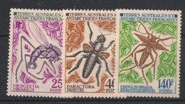 TAAF - 1972 - N°Yv. 40 à 42 - Insectes - Neuf Luxe ** / MNH / Postfrisch - Insectes