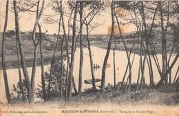 ¤¤    -  MOISDON-la-RIVIERE   -   Etang De La Grande Forge    -  ¤¤ - Moisdon La Riviere