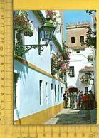 CPM  ESPAGNE, ANDALOUCIA, SEVILLA : Barrio De Santa Cruz, Calle Tipica - Sevilla