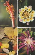 Turkey, TR-TT-N-0423 - 0426, Set Of 4 Cards, Flowers - Magnetic, 2 Scans, - Turkije