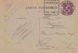 EP Y&T 281-CP1 Obl DAGUIN MUNSTER Du 3.11.34 Adressée à Strasbourg MUNSTER / SA VALLEE / SES FORETS - Marcophilie (Lettres)