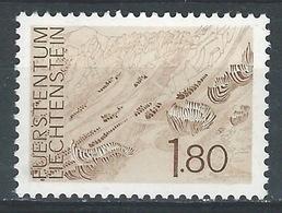RR-/-206. N° 530, *  *,  Cote 3.00 €, Voir Detail  ,  Je Liquide - Liechtenstein