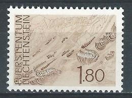 RR-/-461. N° 530, *  *,  Cote 3.00 €, Voir Detail  ,  Je Liquide - Liechtenstein