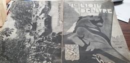 LE LION DELIVRE /BATAILLE ALSACE/DE GAULLE/DELATTRE /BELFORT SUNGDAU/CHURCHILL VALDAHON BESANCON/REMIREMONT /STRASBOURG - Guerre 1939-45