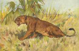 Illustrateur Signé Wardth LIONNE     RV - Lions