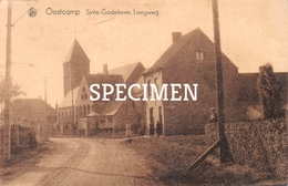 Sinte-Godelieve Leegweg - Oostkamp - Oostkamp