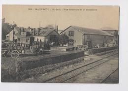MACHECOUL  [44] Loire Atlantique  -  Vue Générale De La Distillerie - Animée - Machecoul