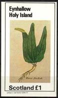 {E001} EYNHALLOW SCOTLAND Plants Horse Radish S/S 1£ MNH** Local Issue !!! - Local Issues