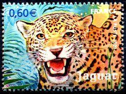 N° Yvert & Tellier 4035 - Timbre De France (2007) - ** Neuf - Jaguar De Guyane - Unused Stamps