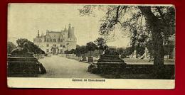 CPA 37 Château De Chenonceaux - Ed ? - Petit Format 6,9 X 13,8  Cms Environ - Chenonceaux