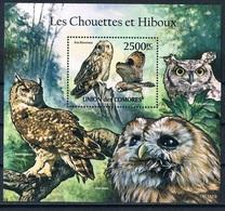 Bloc Sheet  Oiseaux Hiboux Birds Owls  Neuf  MNH ** Comores Comoros 2011 - Colibris