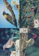 Venda Michel 103-106 Maximumkartenserie - Singvögel - Pájaros Cantores (Passeri)