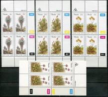 Transkei Mi# 185-8 Zylinderblöcke Postfrisch/MNH Controls - Flora Aloes - Transkei