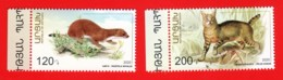 Armenien / Armenie / Armenia / Karabakh 2020, Preservation Of The Wildlife, Cat Weasel - MNH - Armenien