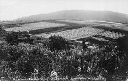 Carte Photo HARTMANNSWILLERKOPF-HARTMANNSWEILER-VIEIL ARMAND-Friedhof-Cimetière Militaire-Haut-Rhin-Guerre-14/18-Krieg - Other Municipalities