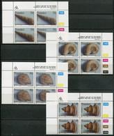 Transkei Mi# 295-8 Zylinderblöcke Postfrisch/MNH Controls - Fossils - Transkei