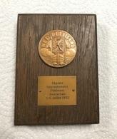 Medaille De La Regate Internationale Feminine - Juillet 1952 - Amsterdam - Professionals / Firms