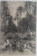 Tozeur - Vue Sur La Berka - Tunisie