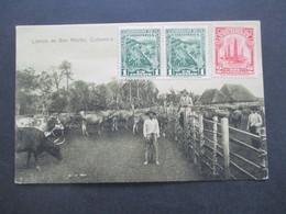 Kolumbien 1933 AK Lianos De San Martin Bauern Mit Rinderherde Echt Gelaufen / Nach Jugoslawien Gesendet - Kolumbien