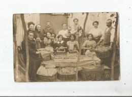CARTE POSTALE ANCIENNE PHOTO TRIAGE  DU  RAISIN CHASSELAS ? MOISSAC ? AVEC BELLE ANIMATION - Cartes Postales