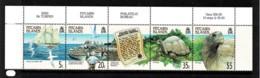Pitcairn Islands 2000 Protection Ordinance - Giant Tortoise Upper Strip Of 5 MNH - Briefmarken
