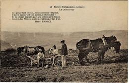 14 . Normandie - Types Normands - Le Laboureur - Vire