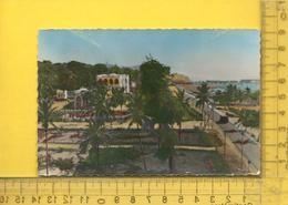 CPM  TOGO, LOME : Le Cercle Vu Du Phare - Togo