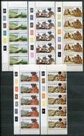 Transkei Mi# 1-17 Zylinderstreifen Postfrisch/MNH Controls - Traditional Life And Sights - Transkei