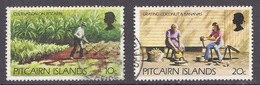 Pitcairn - 1977 Views, Cultivation, Plantation, Grating Coconut And Bananas - Used - Postzegels