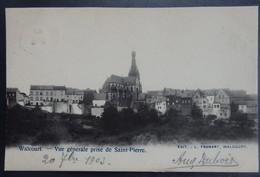 Walcourt - Vue Générale Prise De Saint Pierre - Circulé: 1903 - Etat: Voir 2 Scans. - Walcourt