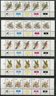 Ciskei Mi# 5-21, 56, 74, 97, 114, 157, 174 Zylinderstreifen Und -blöcke Postfrisch/MNH Controls - Fauna Birds - Ciskei