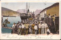 CARTAGENA EL MUELLE 1905 HARBOUR  1452  D3 - Murcia