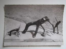 """PREZ-SOUS-LAFAUCHE """"LE ZOO DE BOIS """" Les Branches Naturelles D'Emile CHAUDRON - Autres Communes"""