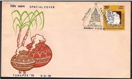 India/Inde: Mucca, Cow, Vache, Latte, Milk, Lait, Divinità Induista, Hindu Deities, Divinités Hindoues - Hinduism