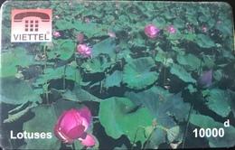 VIÊT- NAM  -  Cards  -  VIETTEL  -  FAKE  -  Lotuses  -  10000 D - Vietnam
