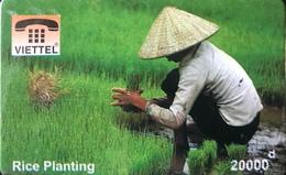 VIÊT- NAM  -  Cards  -  VIETTEL  -  FAKE  -  Rice Planting -  10000 D - Vietnam
