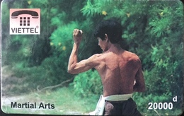 VIÊT- NAM  -  Cards  -  VIETTEL  -  FAKE  -  Martial Arts  -  10000 D - Vietnam